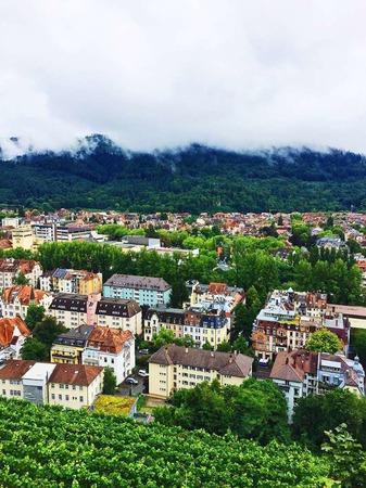 Grün, die Farbe des Lebens (Freiburg)