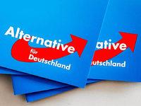 Wie war's bei ... der AfD in Offenburg und der Gegenkundgebung?