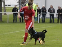 Kurios: Vierbeiniger Flitzer crasht Verbandsliga-Partie