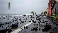 """Karibikinseln von """"Maria"""" verwüstet"""