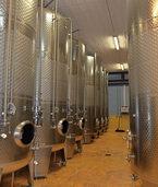 Sanierungsarbeiten zum Wohle des Weins