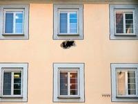 Spektakulärer Ausbruch aus Psychiatrie im Kreis Reutlingen