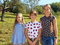 """Drei Mädchen aus Wiechs retten die Kuh """"Mango"""""""