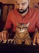 Diese klavierspielende Katze ist ein Instagram-Star
