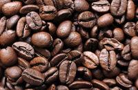 Caritas will in Werkstatt Kaffee rösten