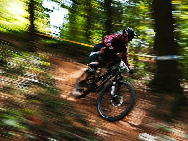 Mountainbiker im Freiburger Wald.
