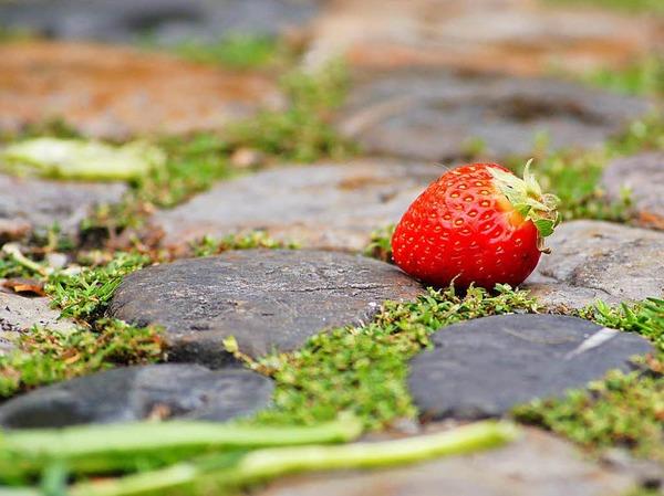 """Siegerfoto in der Kategorie """"Food"""": Marktende (Freiburg) von Attila Fényes. Das Foto entstand bei den Wurstständen auf dem Freiburger Münstermarkt. Fényes fünfjähriger Sohn Jonas machte seinen Vater auf die Erdbeere aufmerksam."""