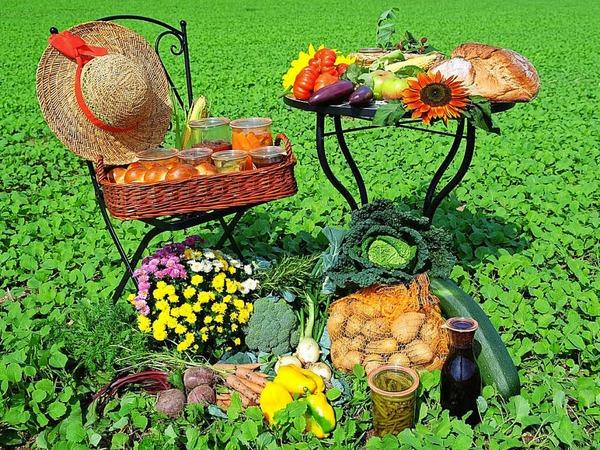 Kategorie Food: Naturköstlichkeiten (Rickenbach-Bergalingen)
