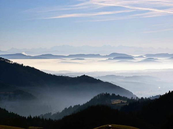 Kategorie Land: Alpenblick vom Zeller Blauen (Zell im Wiesental)