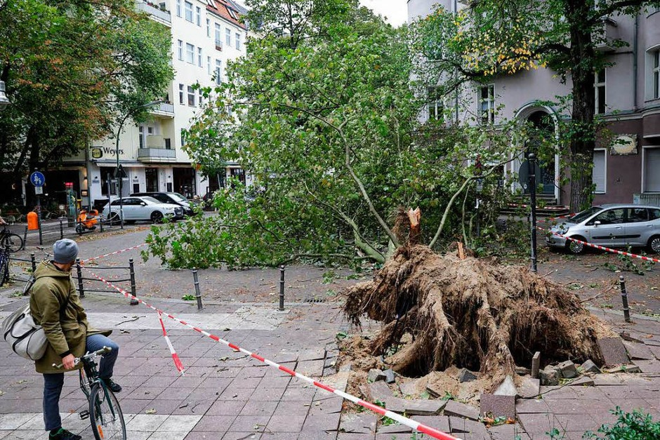 Aufräumen nach dem Sturm (Foto: dpa)