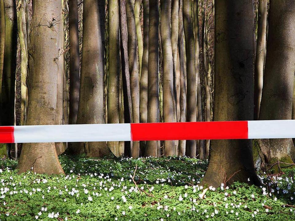 Die im Wald gefundenen Knochen (Symbol...r Freiburger Rechtsmedizin untersucht.  | Foto: Photographer: Klaus Hartwig