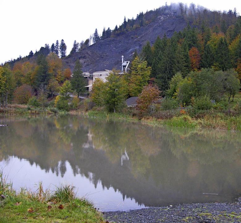 Das Oberflächenwasser aus dem Steinbru...erfarbe ändern, hofft der Gemeinderat.  | Foto: Ulrike Spiegelhalter