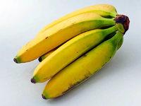 Ein Pilz tötet unsere Bananen – keine Rettung in Sicht