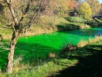Stoff Uranin färbte wohl die Dreisam in Freiburg grün