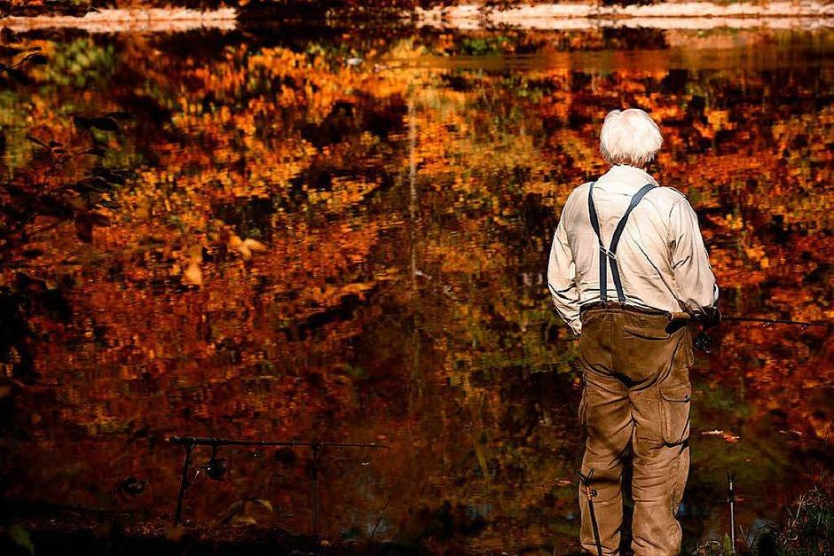 Ein Mann angelt in Stuttgart in einem See, in dem sich der herbstlich gefärbte Wald spiegelt. (Foto: dpa)