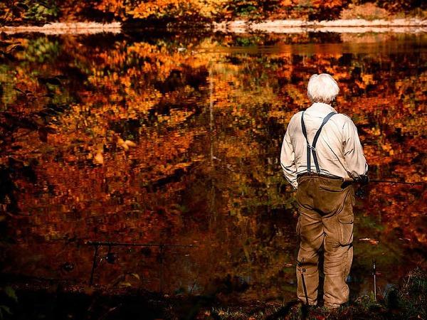 Ein Mann angelt in Stuttgart in einem See, in dem sich der herbstlich gefärbte Wald spiegelt.