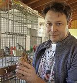 Kleine Vögel, die zu großen Delikatessen werden