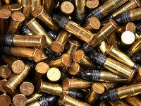 Entscheidung um die Munitionsfabrik in Lahr wird denkbar knapp