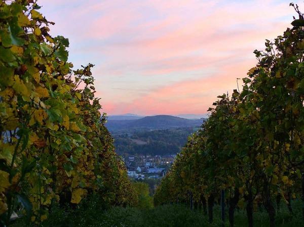 Lahr und die Rheinebene im Lichtschein des Abends