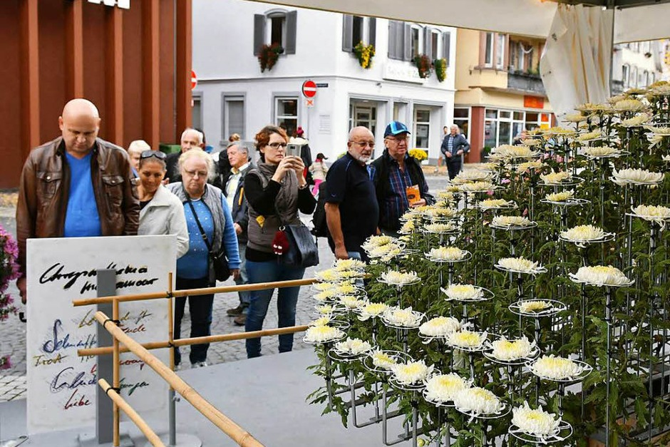 Impressionen vom Eröffnungswochenende der Chrysanthema 2017 (Foto: Wolfgang Künstle)