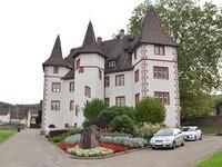 Riedel verteidigt Kritik Schlossgarten-Umgestaltung