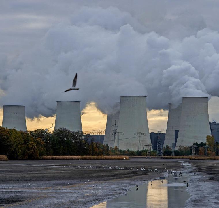 Klimakiller Braunkohle: Steuert die Po...ftsführer des Öko-Instituts Freiburg.   | Foto: fotos: Rix/dpa