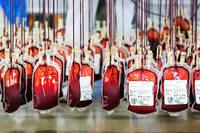 Hier wird im Breisgau am meisten Blut gespendet