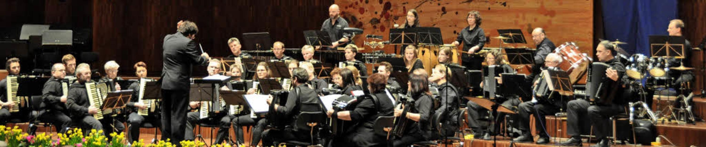 Die Gäste des Doppelkonzerts: Das hoch... Akkordeon-Orchester Baltmannsweiler    | Foto: Privat