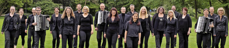 Die Gastgeber des Doppelkonzerts: Das ...nika- und Akkordeonclubs Bad Krozingen  | Foto: Privat