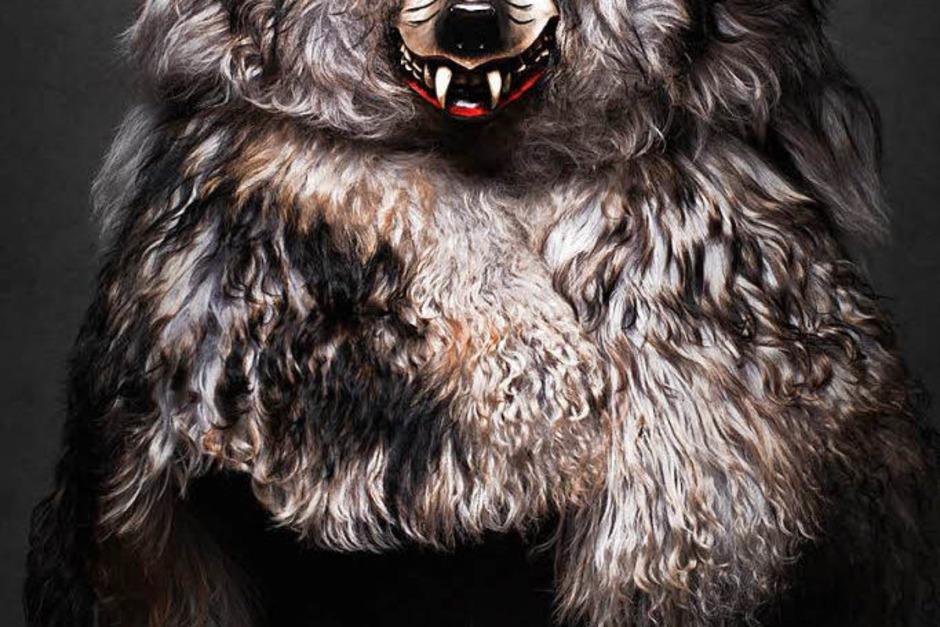 Schattenwolf Ballrechten-Dottingen (Foto: Felix Schelb)