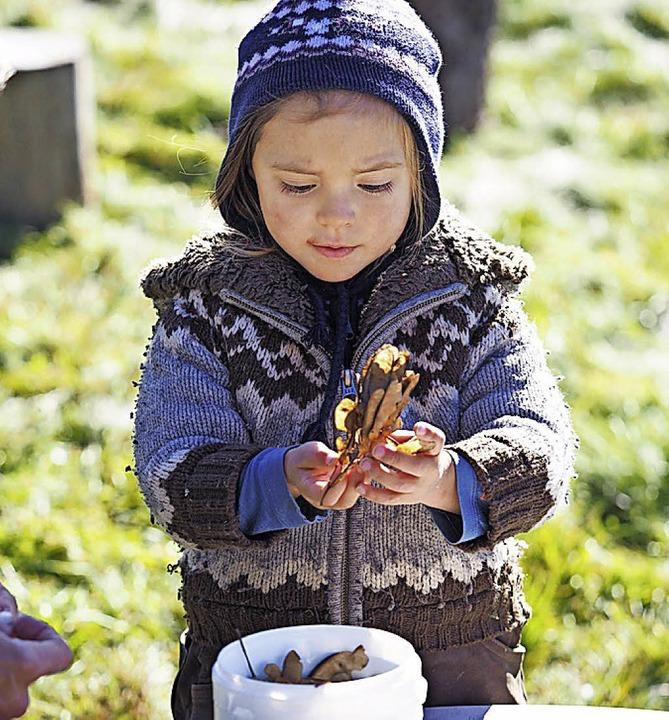 Marie begutachtet die Ahornsamen, aus denen Schmuck entstehen soll.  | Foto: Susanne Gilg