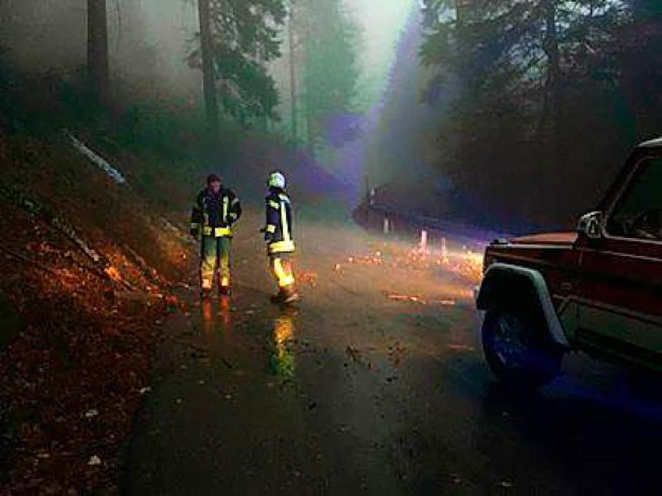 Auch im Dunkeln geht der Einsatz weiter  | Foto: Feuerwehr Waldkirch