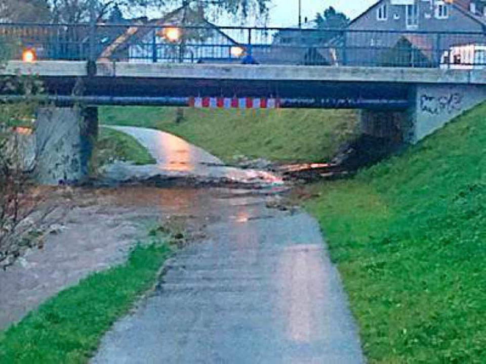 Der Weg unter der Galgenbrücke ist überspült.  | Foto: Feuerwehr Waldkirch