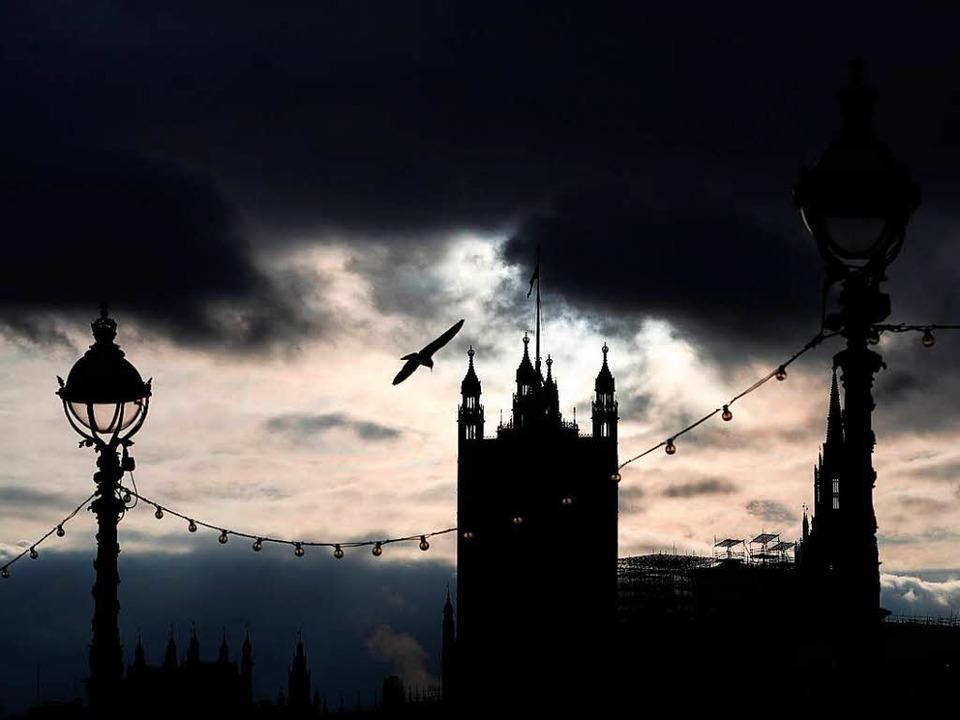 Eine Möwe fliegt nahe der Themse in Lo...Parlaments im Vereinigten Königreich.   | Foto: dpa
