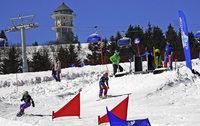 Deutscher Skiverband zeichnet Nachwuchsarbeit des SC Altglashütten aus