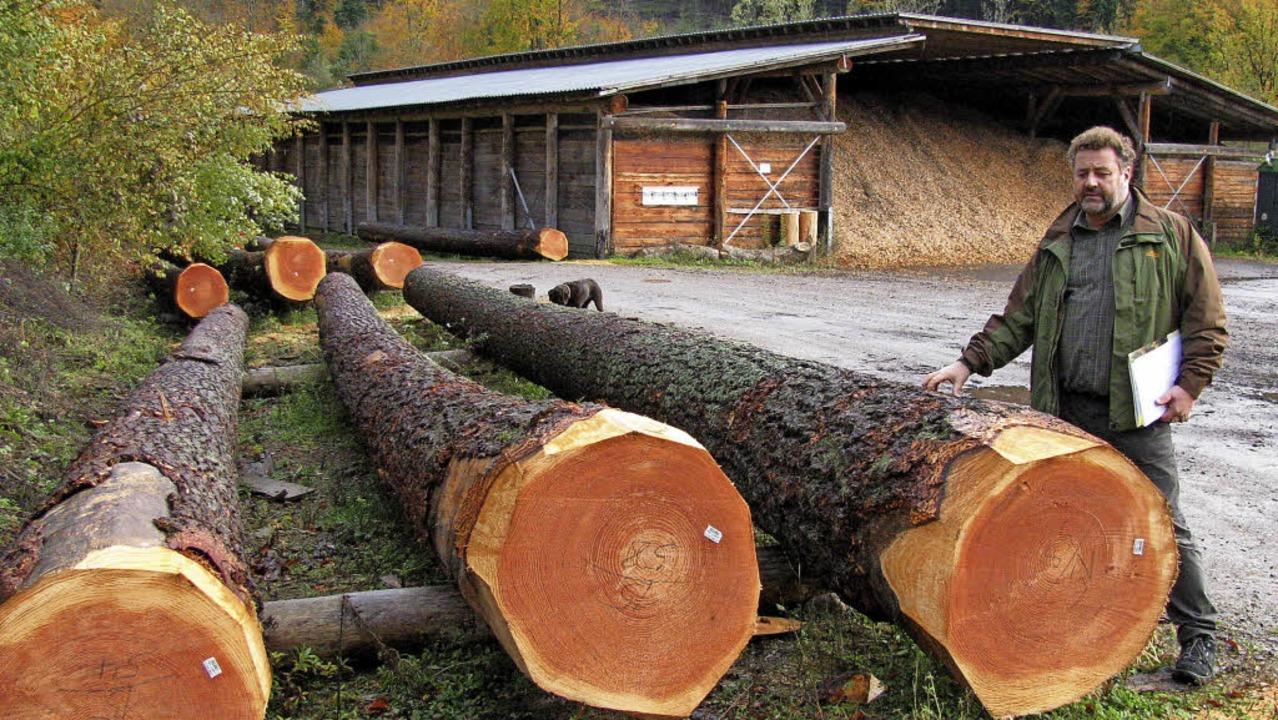 Der heimische Wald ist nach wie vor ei...rbert Stiefvater hier im Tiroler Grund  | Foto: Manfred Lange