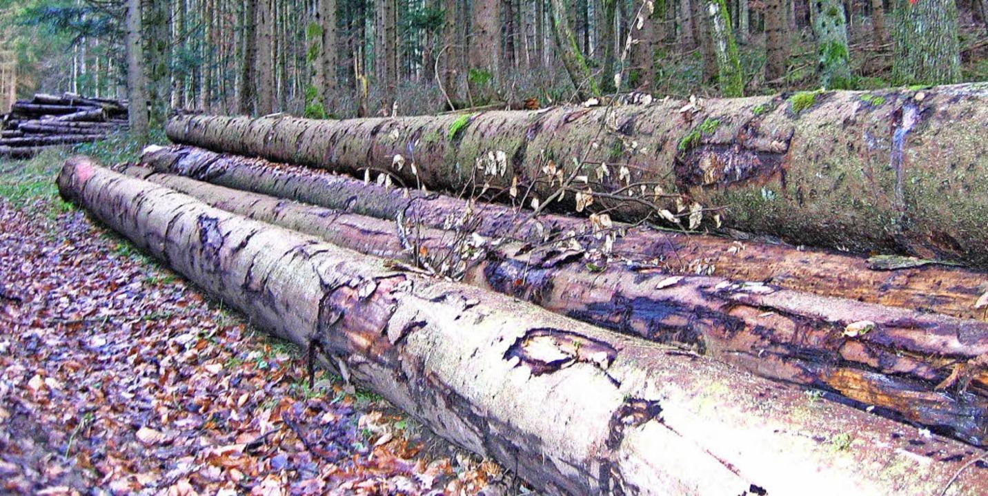Die drei Forstbetriebsgemeinschaften d...arktung in Zukunft eventuell bündeln.   | Foto: Archivfoto: Jung-Knoblich