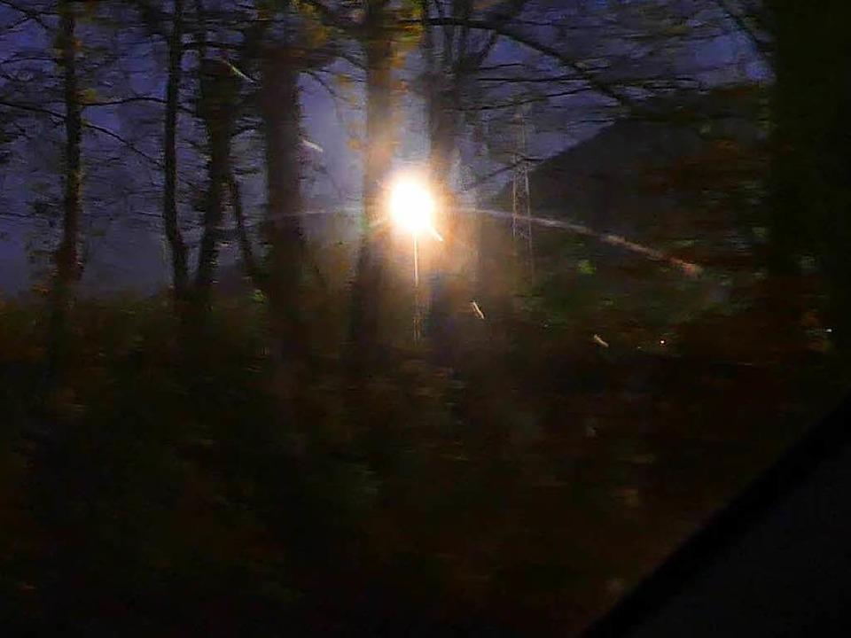 Blendet das Flutlicht am Wiesentalstadion in Steinen Autofahrer?  | Foto: Susanne Filz