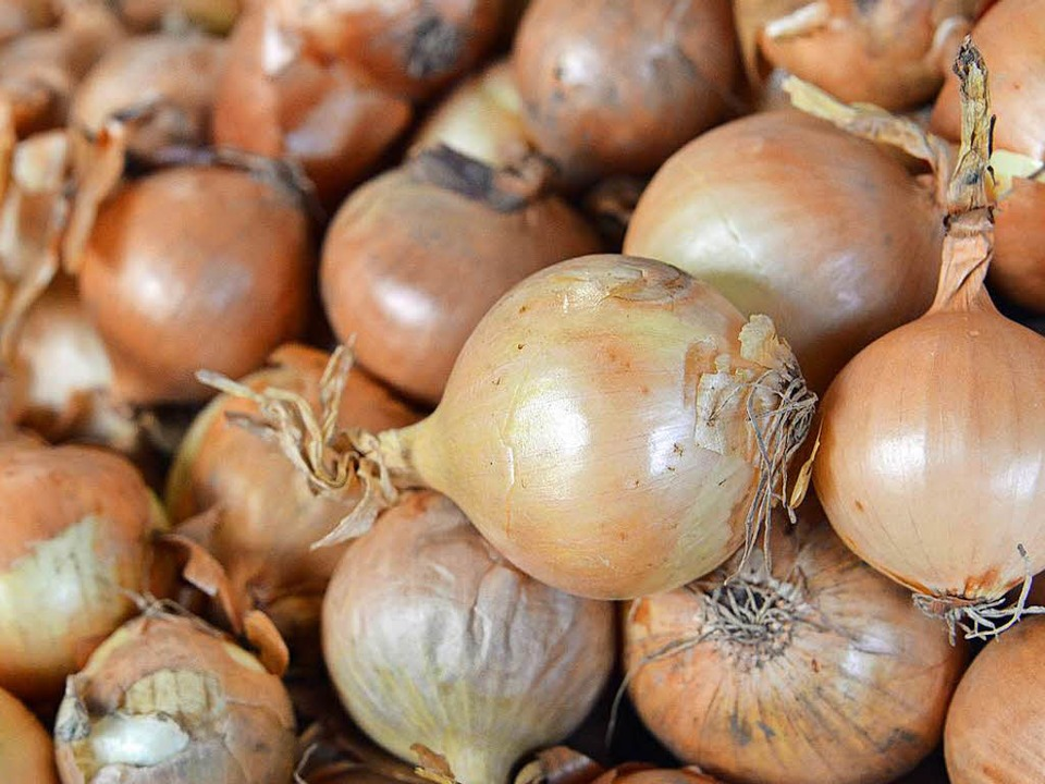 Ohne Zwiebeln schmeckt fast kein Essen...en, wenn man Zwiebeln geschnitten hat.    Foto: Michael Bamberger