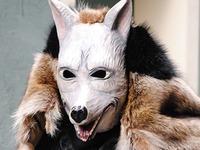 Wie die Totenbühl-Wölfe ins Werbefernsehen kamen
