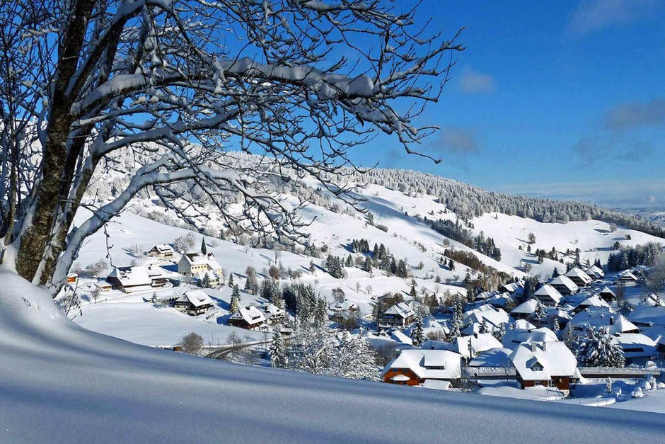 Hofsgrund vor wenigen Tagen (Foto: Barbara Odrich-Rees)