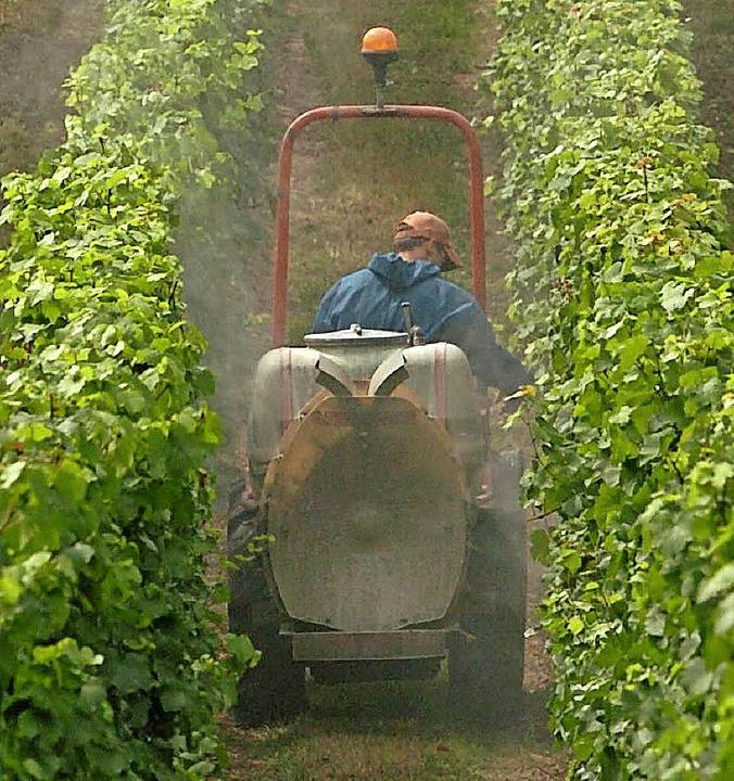 Die neue Düngeverordnung schränkt das Ausbringen von Substraten im Weinbau ein.  | Foto: dpa