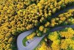 Das sind die schönsten Fotos des Freiburger Jugendfotopreises
