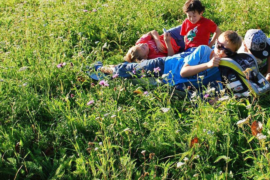 Picknick im Sommer (Foto: Oskar Scherer)