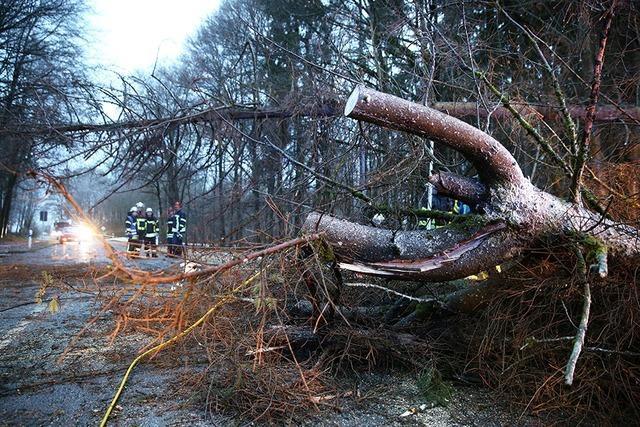 Sturmschäden behindern Verkehr, Baum erschlägt Frau