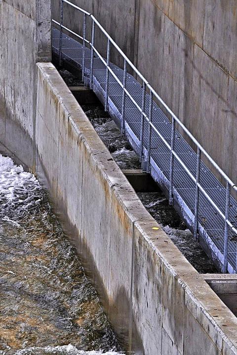 Das Kraftwerk Schappe verfügt nun über eine Fischtreppe.    Foto: Nicolai Kapitz