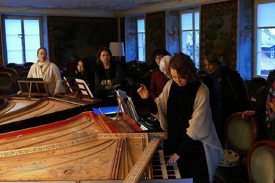 BZ-Leser bei der Führung durch die einzigartige Sammlung historischer Tasteninstrumente im Schloss in Bad Krozingen (Foto: Susanne Müller )