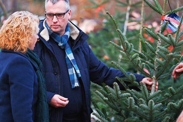BZ-Weihnachtsbaumaktion 2017 in Zarten