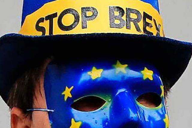 Umfrage: 51 Prozent der Briten wollen Brexit-Rücktritt