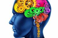 Freiburger Experte: Gehirndaten gehören nicht ins Netz